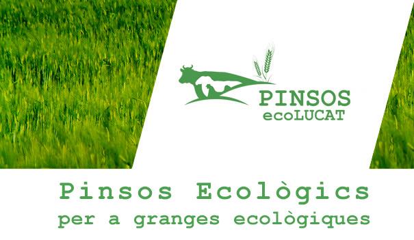 pinsos ecològics ecolucat